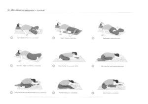 thumbnail of asanas-bei-menstruation